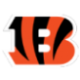 Bengals Draft